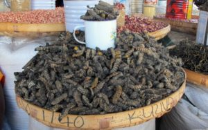 Top 10 Bizarre Local Delicacies from Around the World